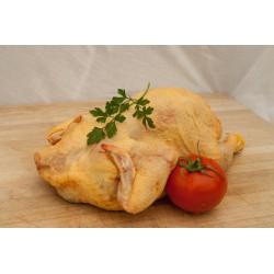 Pollo entero - Granja